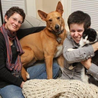 petfamily