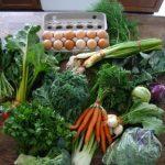 A Box of Fresh Veggies