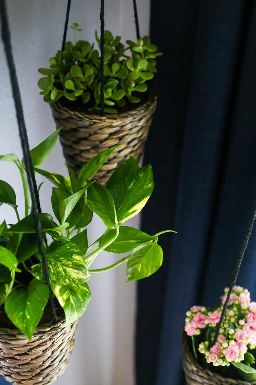 Diy Indoor Hanging Planters Love Amp Renovations