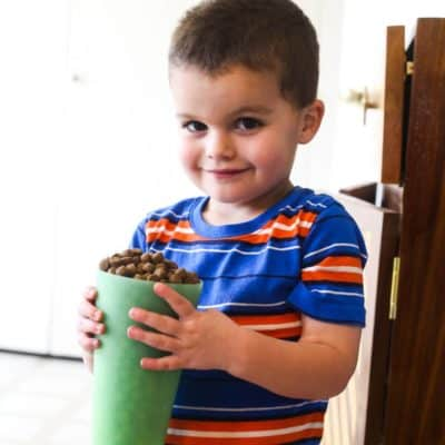 Tips, tricks, and ideas for getting your toddler or preschooler to help around the house. Ideas for chores that young children can do!
