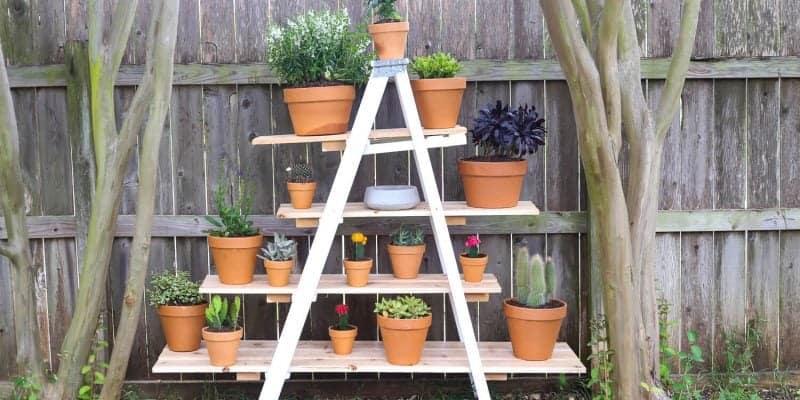 DIY Tiered Ladder Garden