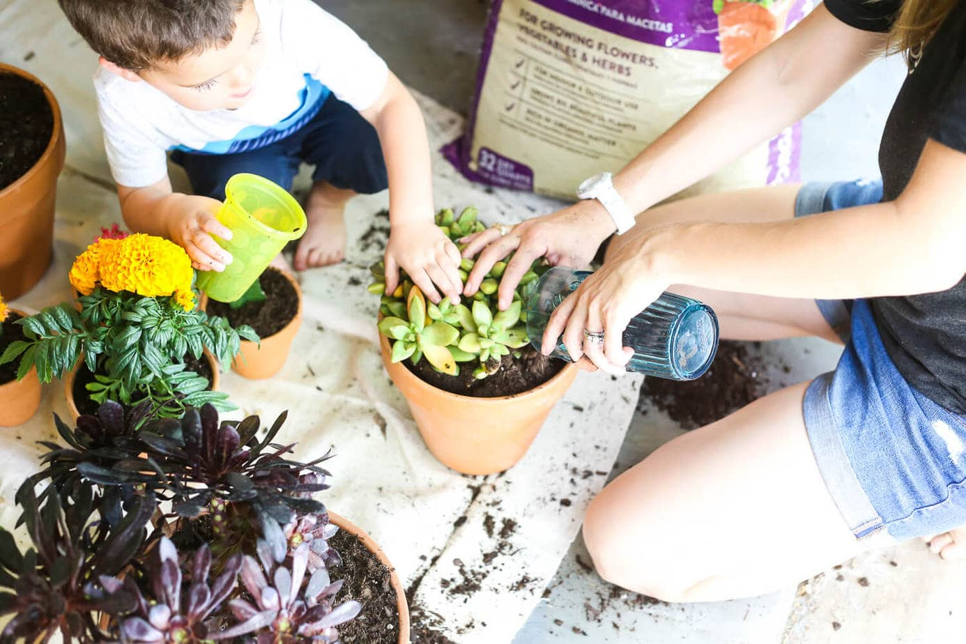 Planting with a toddler