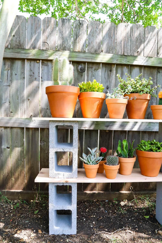Outdoor plant display