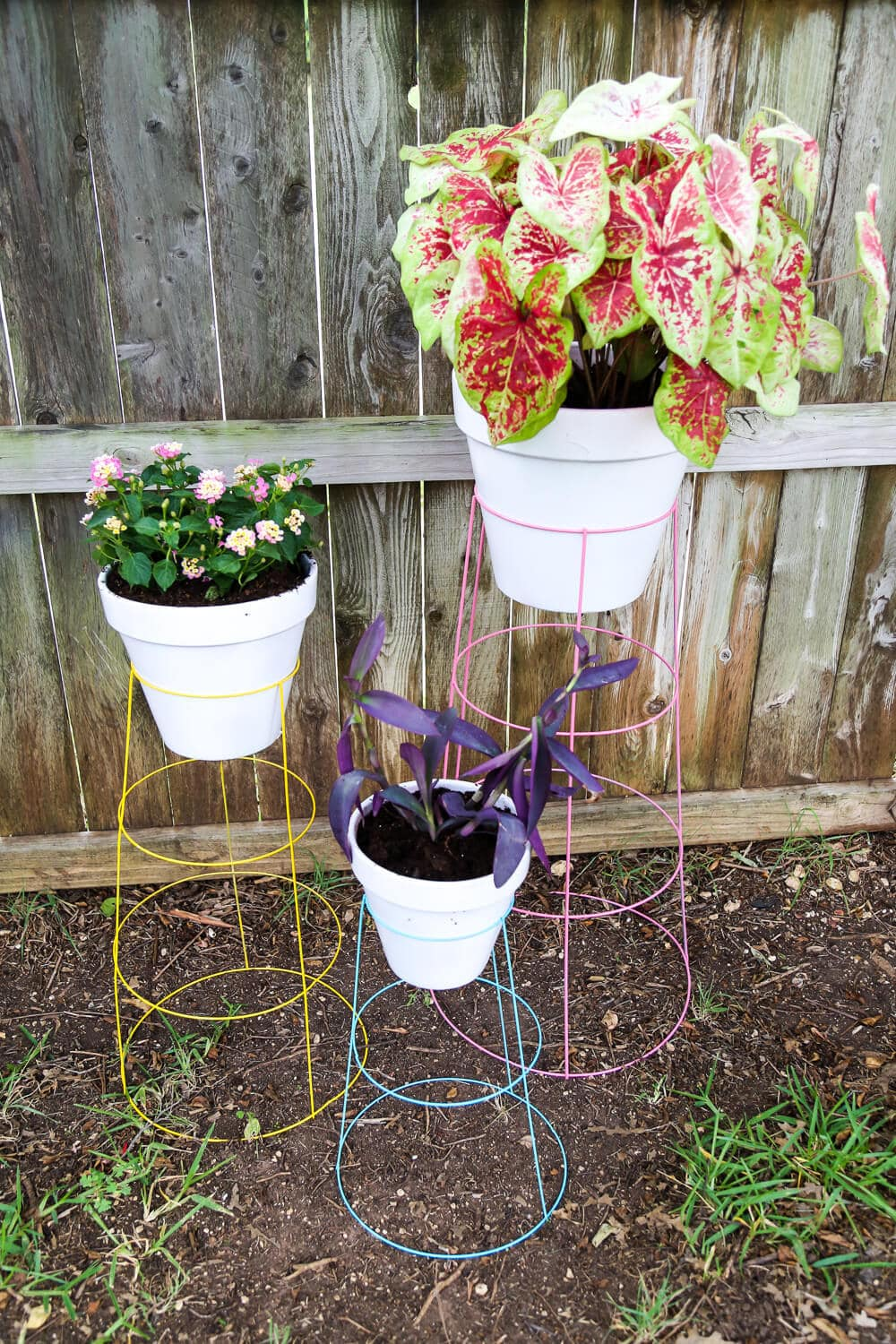 Diy Plant Stand  How To Turn A Tomato Cage Into A Wire