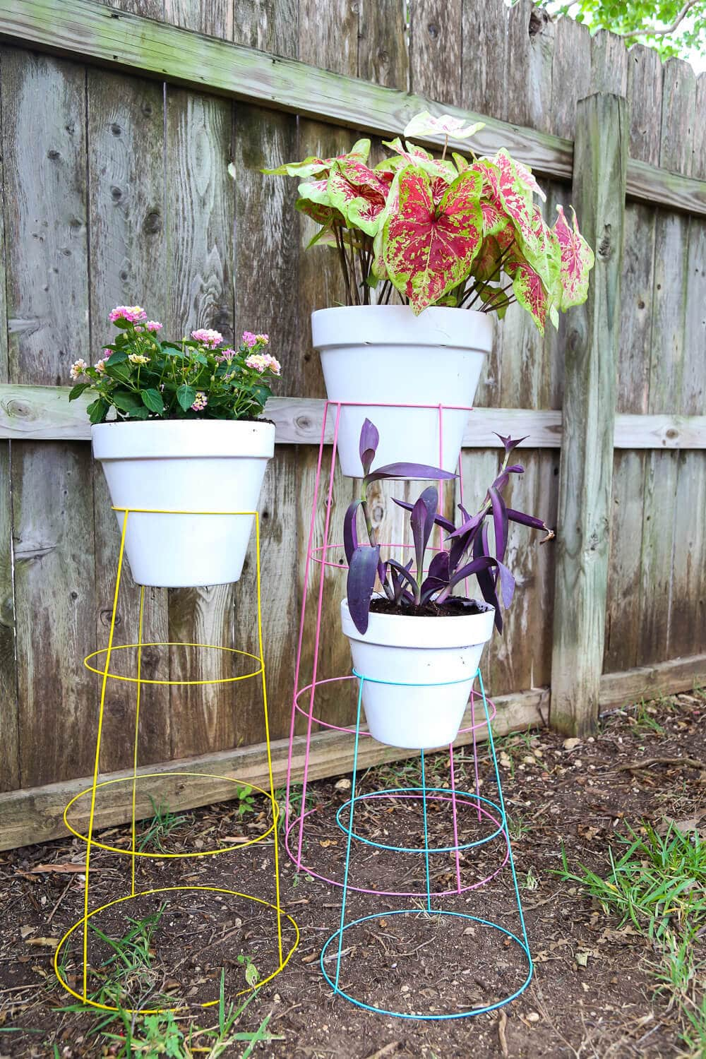 How to make tomato cage plant stands
