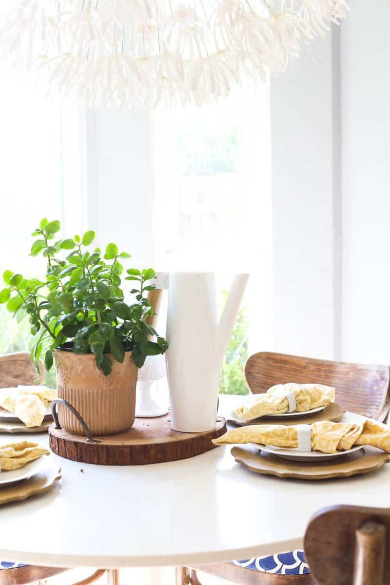 A cute and cozy breakfast nook with a gorgeous green plant
