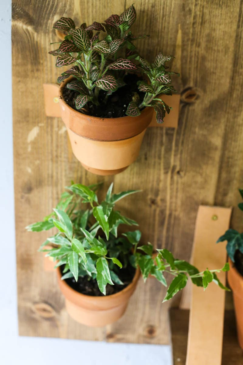 Easy DIY vertical wall planter