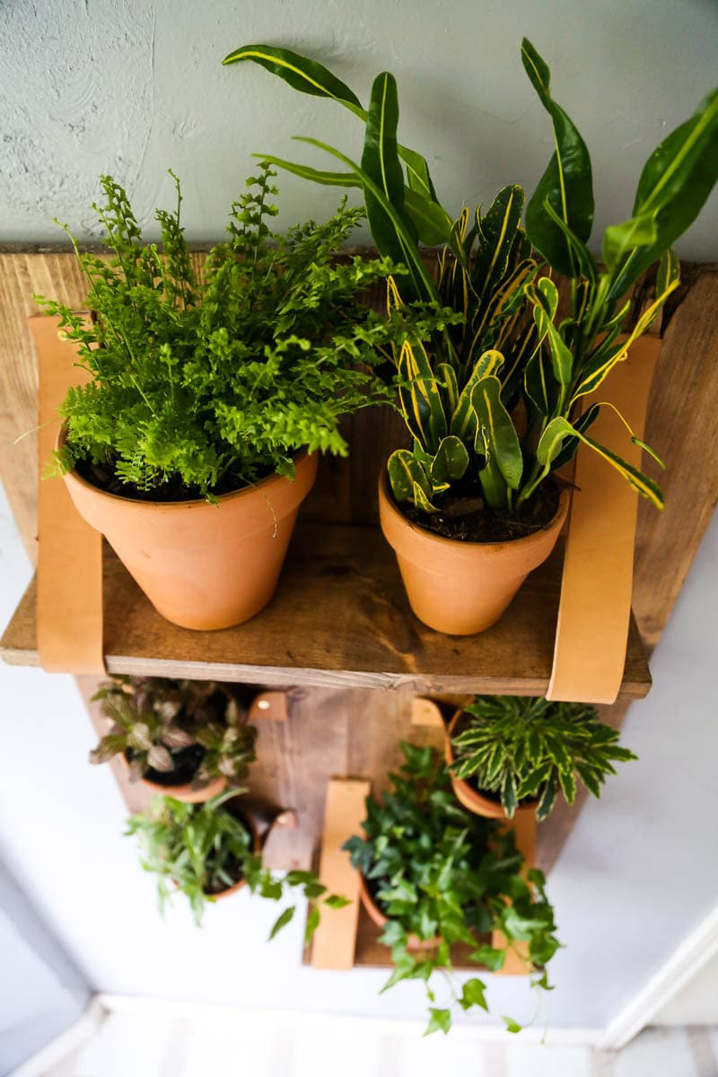 A beautiful and simple vertical wall planter for your houseplants