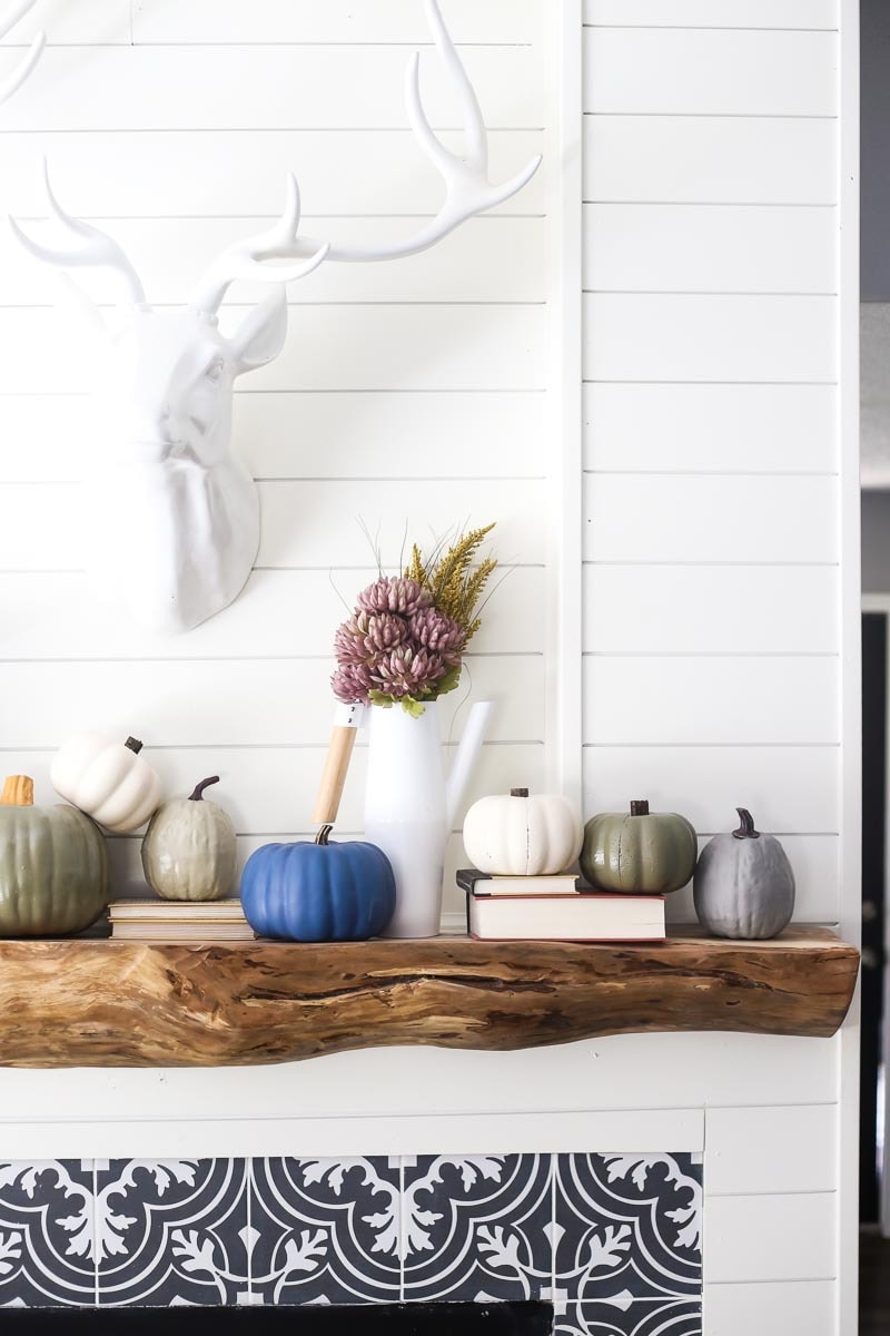 DIY pumpkins painted for fall - gorgeous and simple DIY fall decor