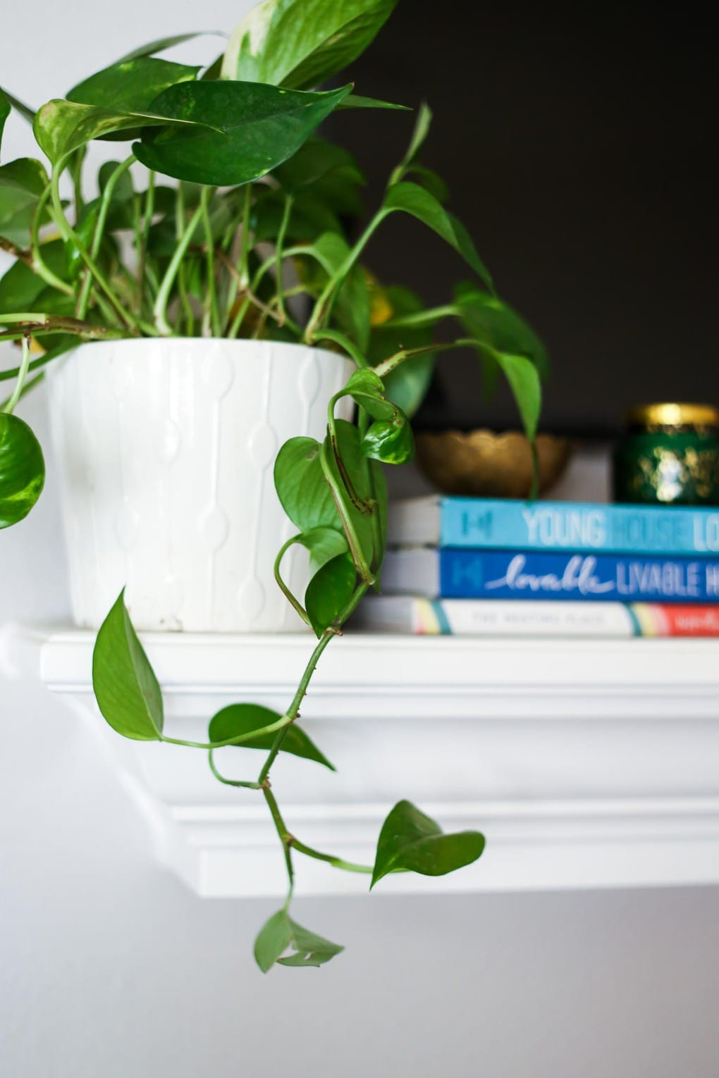 Adding a plant to the mantel
