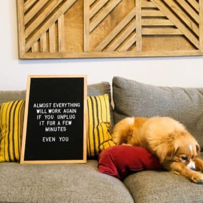 "Dog laying on a couch with a felt letter board next to him - letter board says ""Almost everything will work again if you unplug it for a few minutes - even you"""