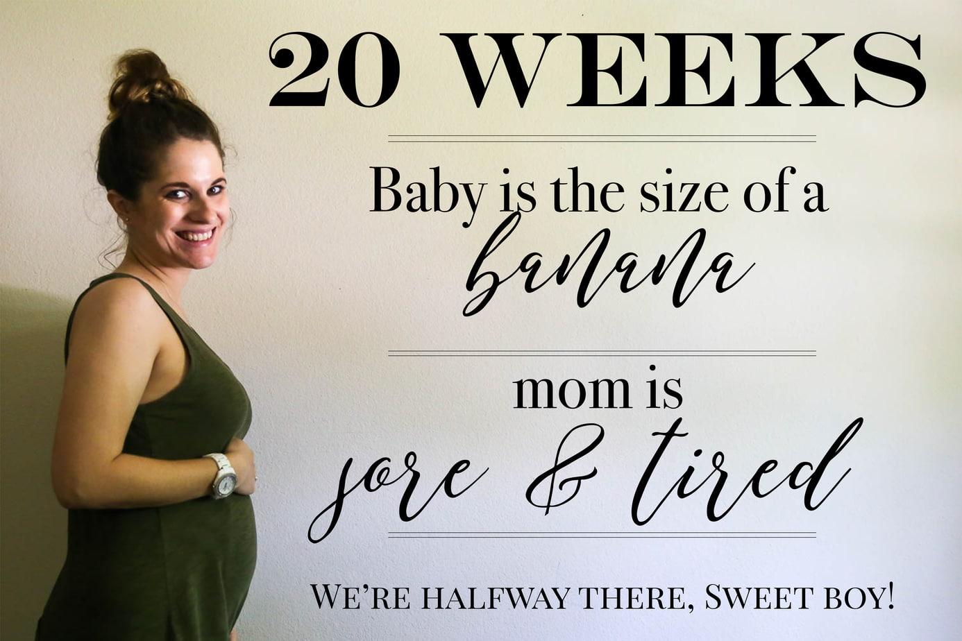 Pregnancy photo book tips