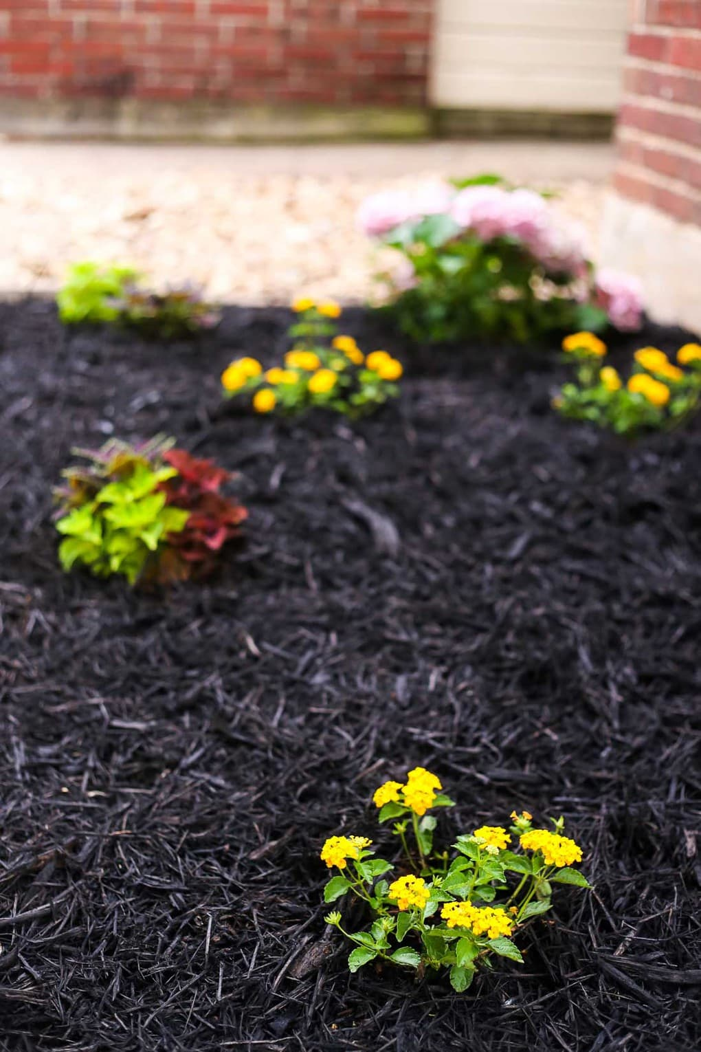 Tips for front yard landscaping - front flower bed ideas