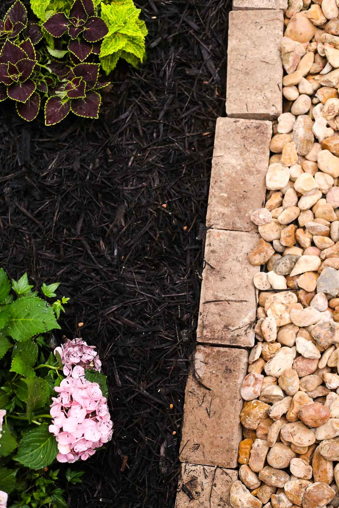 Ideas for landscaping in front yard