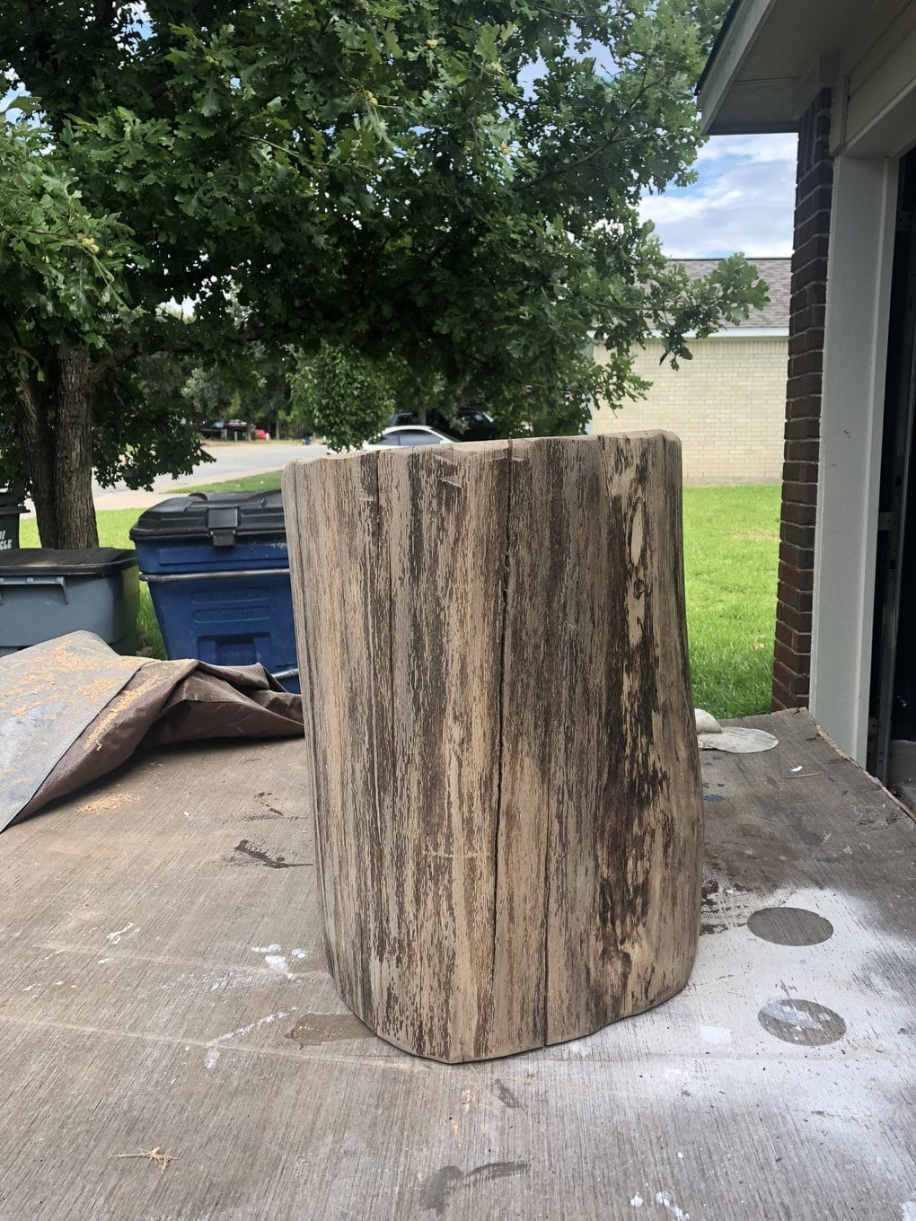 tree stump for table