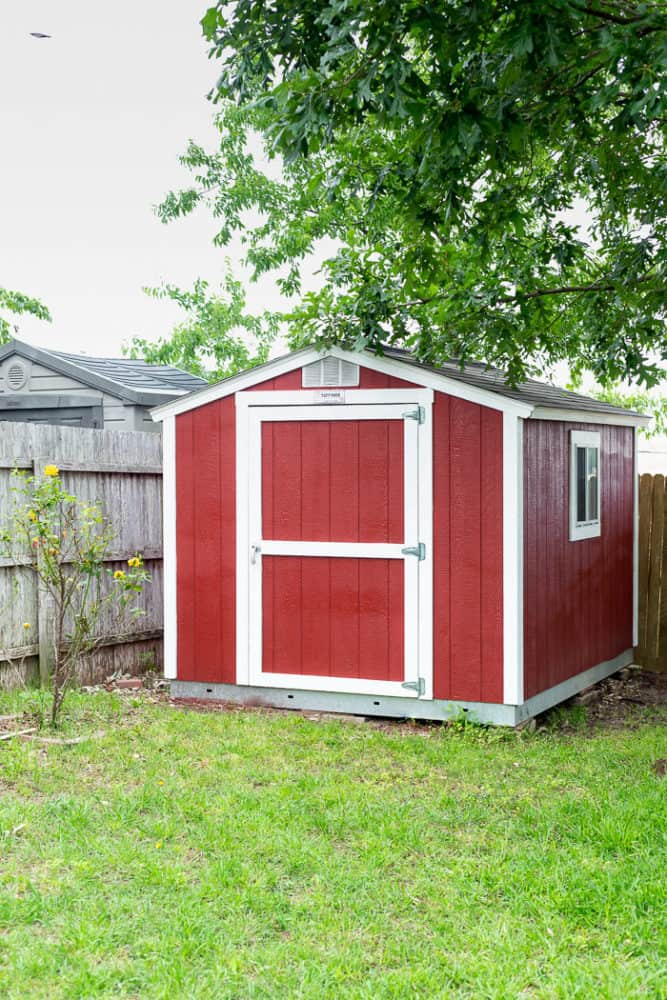 backyard with red storage shed