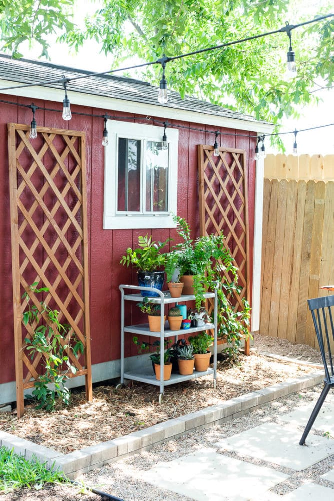 Backyard patio with trellises and plants on a bar cart