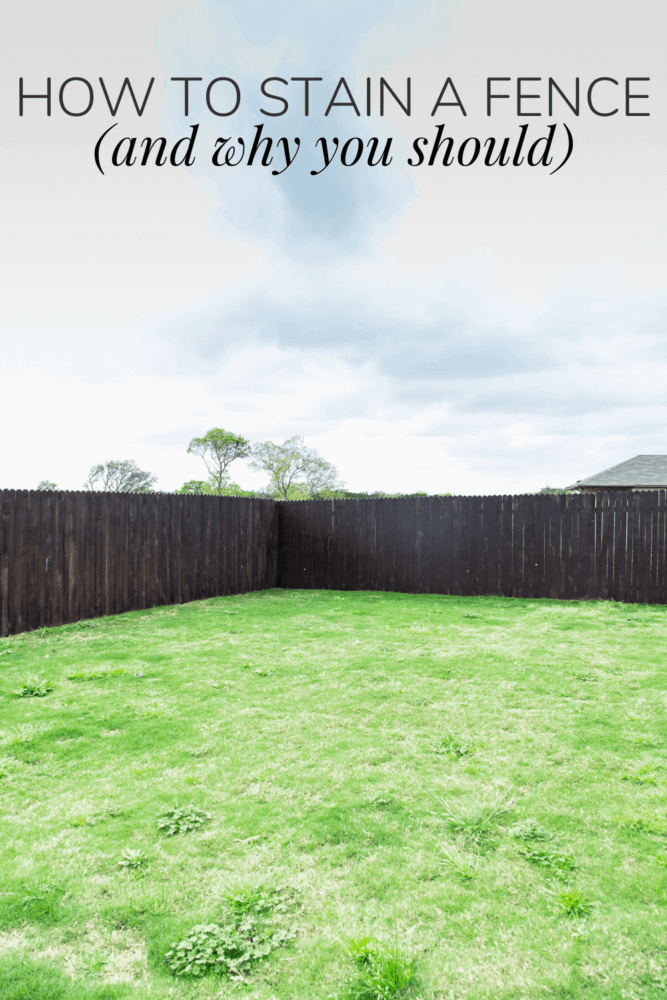 a dark brown fence with text overlay - how to stain a fence (and why you should)