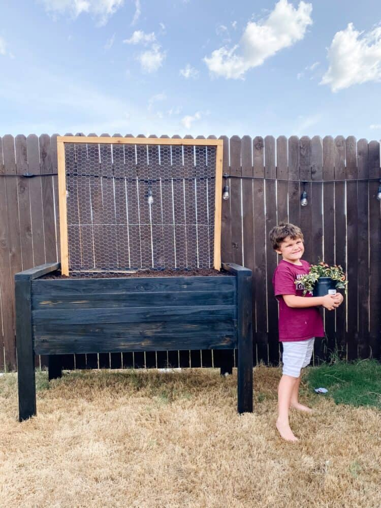 boy standing next to a elevated garden bed