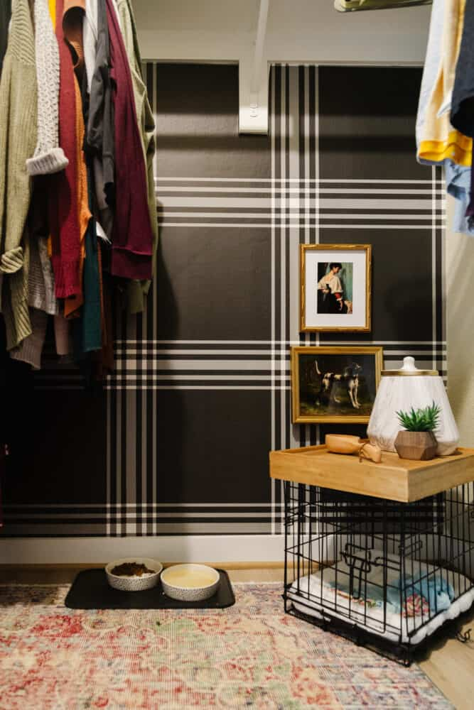 corner of closet with plaid wallpaper and dog gear
