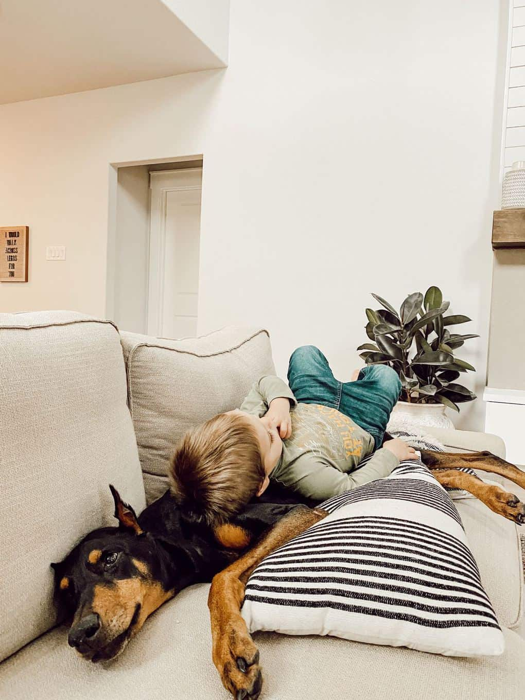 A doberman sleeping on a white sofa with a toddler laying on top of her